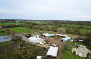 Picture of 434 Dingey Road, Naringal East VIC 3277