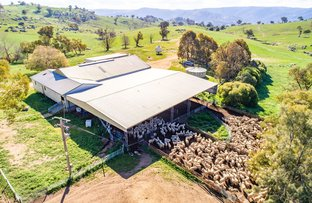 Picture of 635 Decca Road, Bigga NSW 2583
