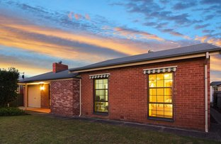 Picture of 38 Rowells Rd, Lockleys SA 5032