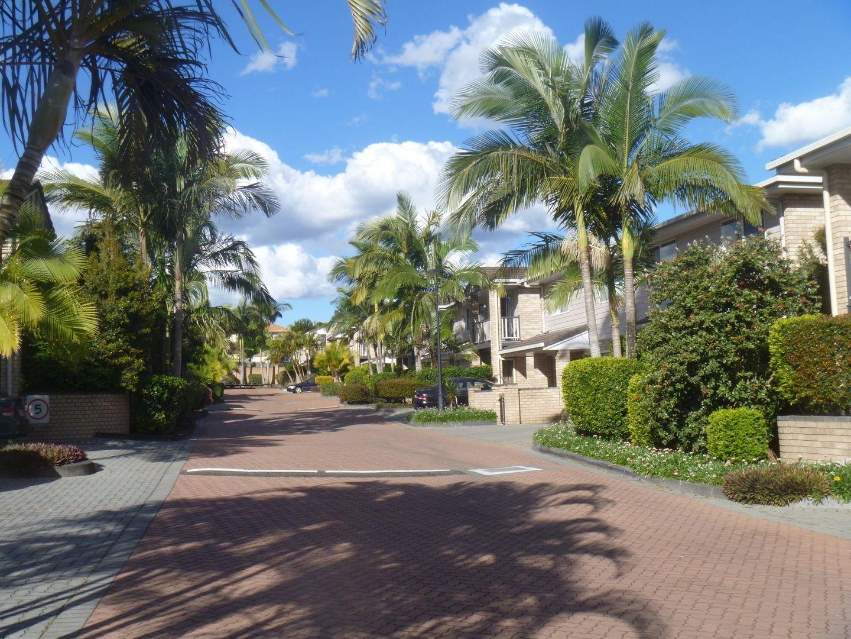 16 Arcadia Street, Eight Mile Plains QLD 4113, Image 2