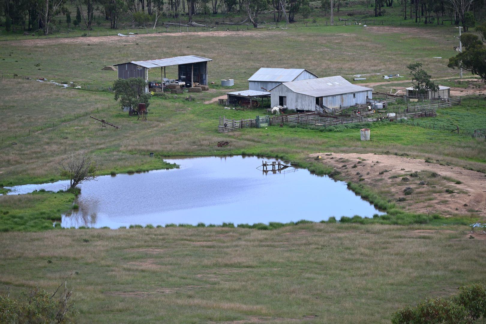 'Bunndarra & Towealgra' Digilah West Road, Dunedoo NSW 2844, Image 1