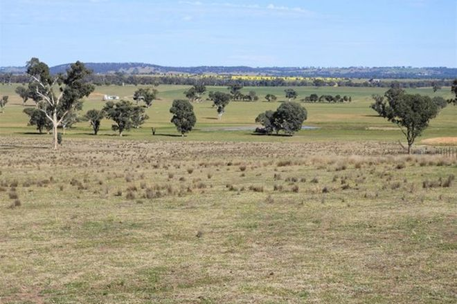 Picture of 125 Grounds Road, MURRINGO NSW 2586