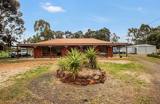 Picture of 175 Adelaide Lead - Alma Road, Alma VIC 3465
