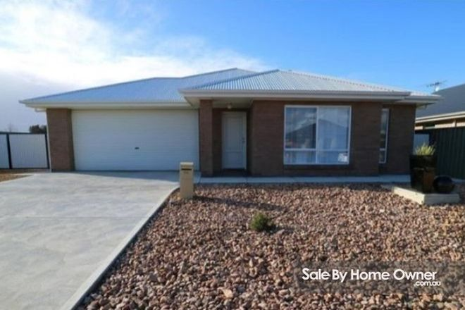 Picture of 36 Hearl St, NURIOOTPA SA 5355