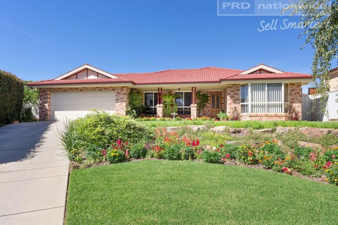 Picture of 12 Delvin Place, KOORINGAL NSW 2650