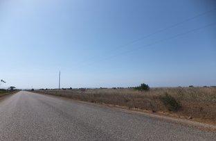 Picture of Lot 631 Steeredale Road, Hopetoun WA 6348