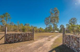 Picture of 24 Raintree Road, Glenwood QLD 4570