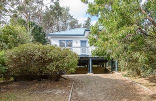Picture of 14 Native Way, Moruya Heads NSW 2537