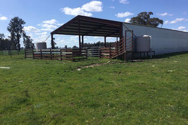 Picture of Humeden Road, COLLENDINA NSW 2646
