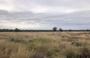 Picture of 1617 Bundalba Road, Goovigen QLD 4702
