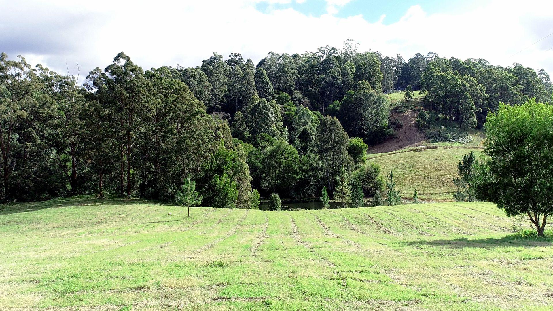 126 Gabal Road, Nimbin NSW 2480, Image 1