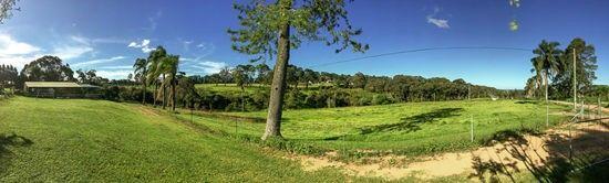 117 Killkenny Road, Somersby NSW 2250, Image 0