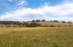 Picture of Lot 1 Wyndella Road, Lochinvar NSW 2321