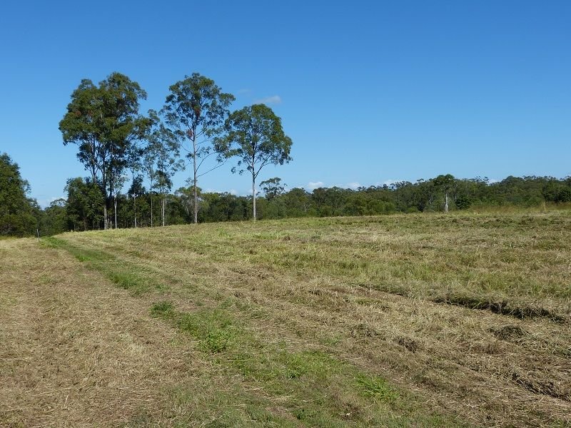 Lot 80 of 1873 Mungar Rd, Pioneers Rest QLD 4650, Image 0