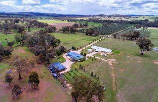 408 Botobolar Road, Mudgee NSW 2850