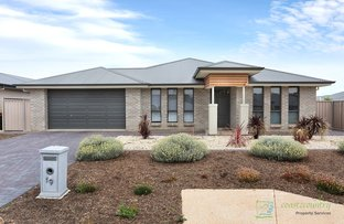 Picture of 19 Moore Avenue, Nuriootpa SA 5355