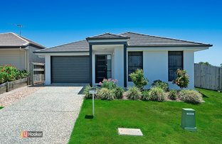 Picture of 19 Portmarnock Street, North Lakes QLD 4509