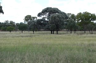 Picture of . Kandimulla, Mitchell QLD 4465