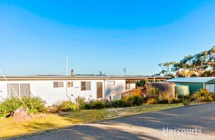 Picture of 14 Smith Street, Bellingham TAS 7254