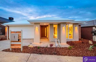19 Wheelwright Street, Clyde North VIC 3978