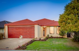 Picture of 45 Tickle Road, Seville Grove WA 6112