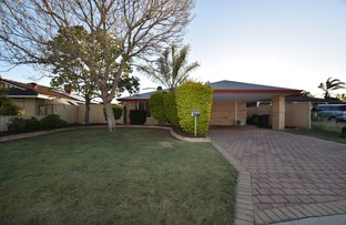 Picture of 16 Waterlily Close, Huntingdale WA 6110