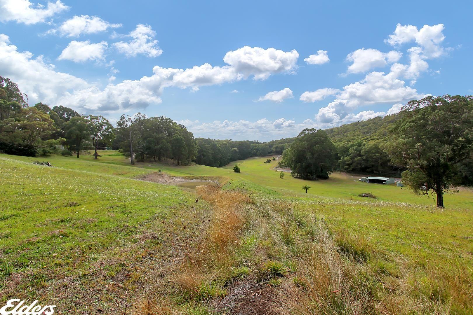 453 BULGA PARK ROAD, Macks Creek VIC 3971, Image 2