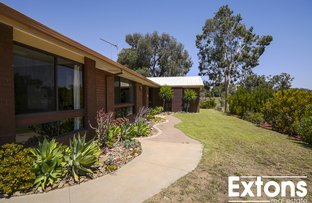 Picture of 246 BAYLY STREET, Mulwala NSW 2647