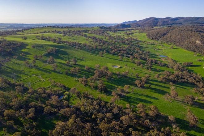Picture of 201 Timber Ridge Road, WALANG NSW 2795