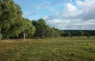 Picture of 117 Caladenia Close, Lower Chittering WA 6084