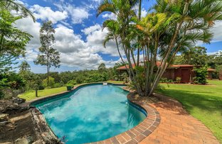 Picture of 355 San Fernando Drive, Worongary QLD 4213
