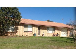 Picture of 153 Denison Street, Mudgee NSW 2850