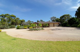 Picture of 34 Slaughter Road, Loveday SA 5345