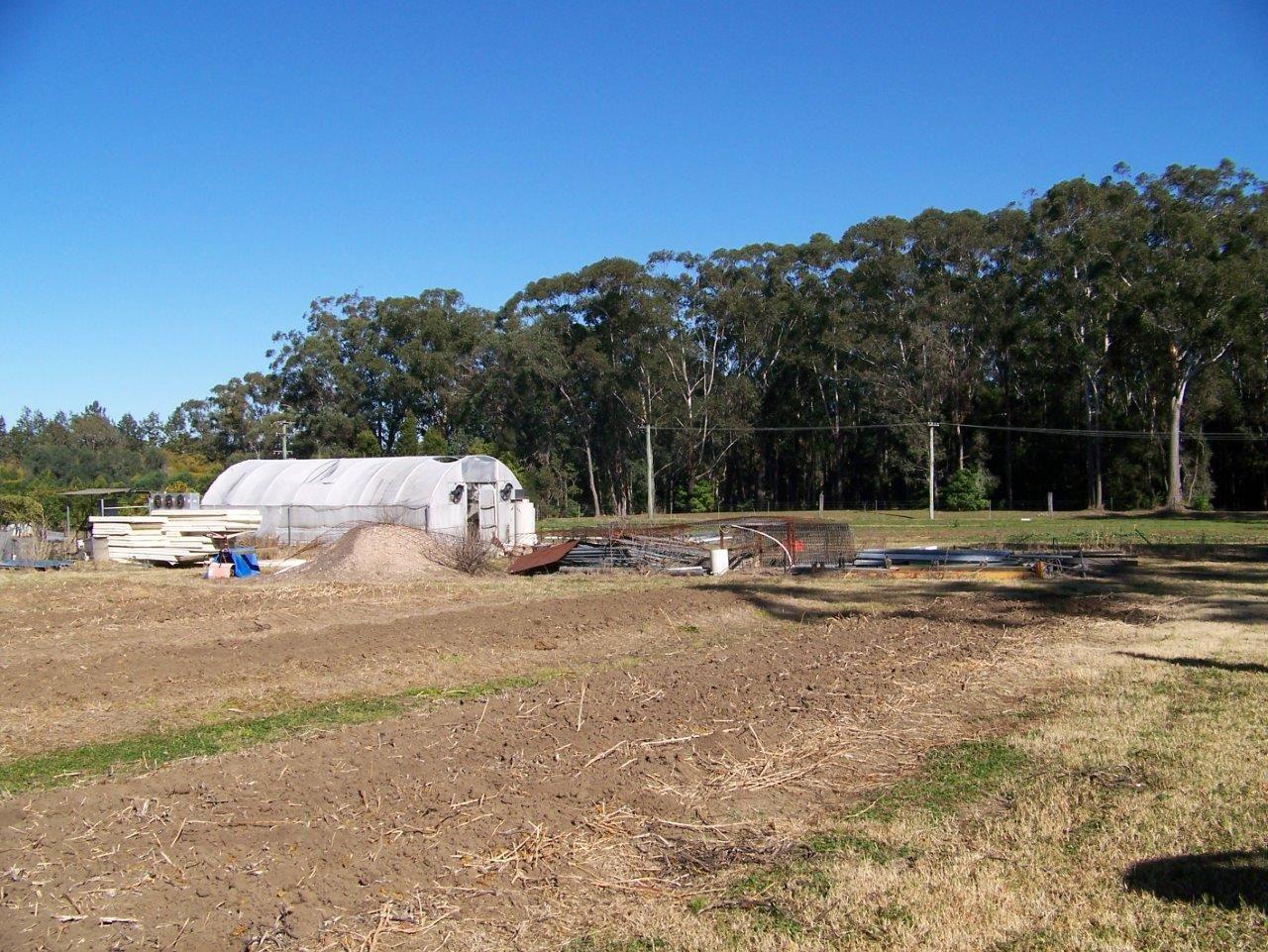 4 Blueberry, Medowie NSW 2318, Image 2
