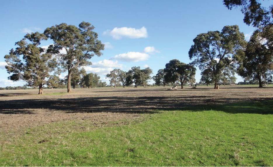 ' Boyanup - Picton Road ', Dardanup WA 6236, Image 0