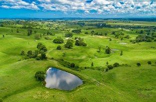 Picture of 100 Ingram Road, Wyrallah NSW 2480