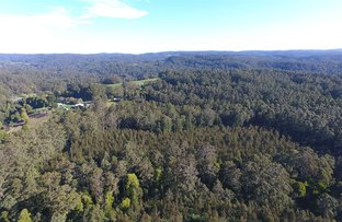 Picture of 480 Forrest-Apollo Bay Road, Forrest VIC 3236