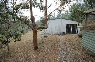Picture of 7936 Old Glen Innes Road, Newton Boyd NSW 2370