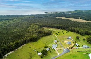Picture of 41 Warrell Waters Road, Gumma NSW 2447