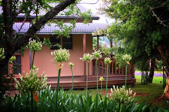 Picture of 44 Myrtle Street, DORRIGO NSW 2453