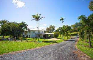 Picture of 642 Farleigh-Habana Road, Farleigh QLD 4741