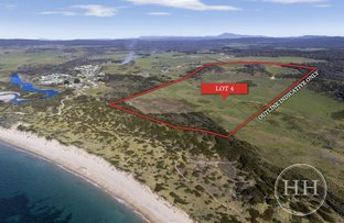 Picture of 1153 Soldiers Settlement Road, Beechford TAS 7252