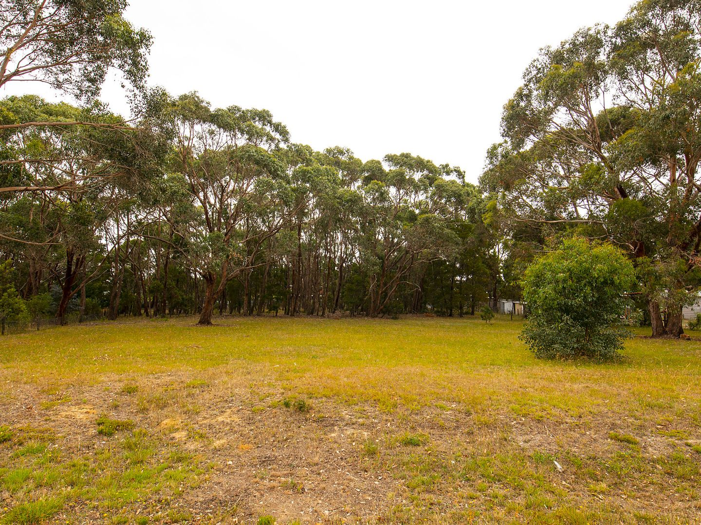 Lot 57 Briardale Avenue, Enfield VIC 3352, Image 1