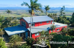 Picture of 127 Camm Road, Mount Julian QLD 4800