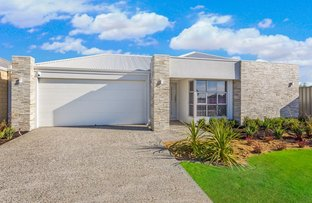 15 Melksham Way, Wellard WA 6170