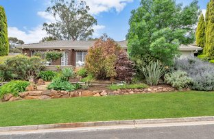 Picture of 19 Banksia Road, Aberfoyle Park SA 5159