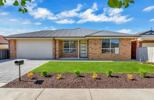 Picture of 10 Dee Street, Woodville South SA 5011