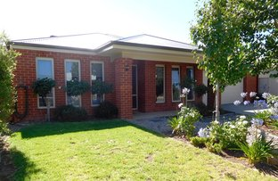 Picture of 15 Kerang Avenue, Kialla VIC 3631