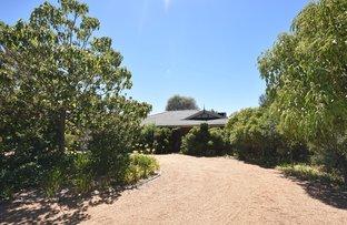 Picture of 1 Araluen Way, Dubbo NSW 2830