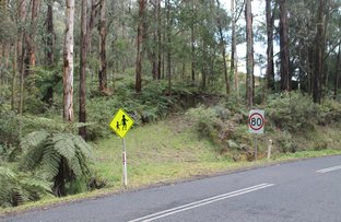 Picture of 678 Mt Baw Baw Tourist Road, Noojee VIC 3833